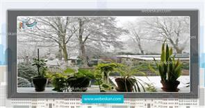 نگهداری از گیاهان در زمستان